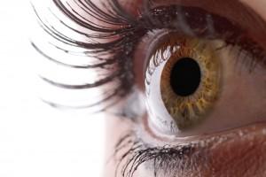 eyecornea